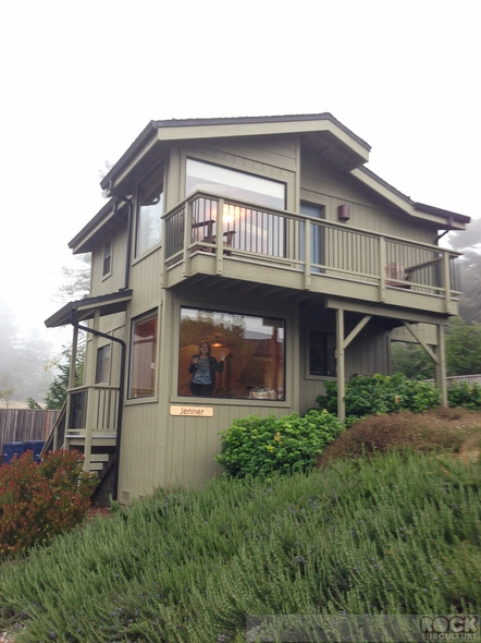 Cottages-at-Little-River-Cove-Hotel-Motel-Resort-Review-2014-Mendocino-Northern-California-Coast-Pet-Dog-Friendly-23-RSJ