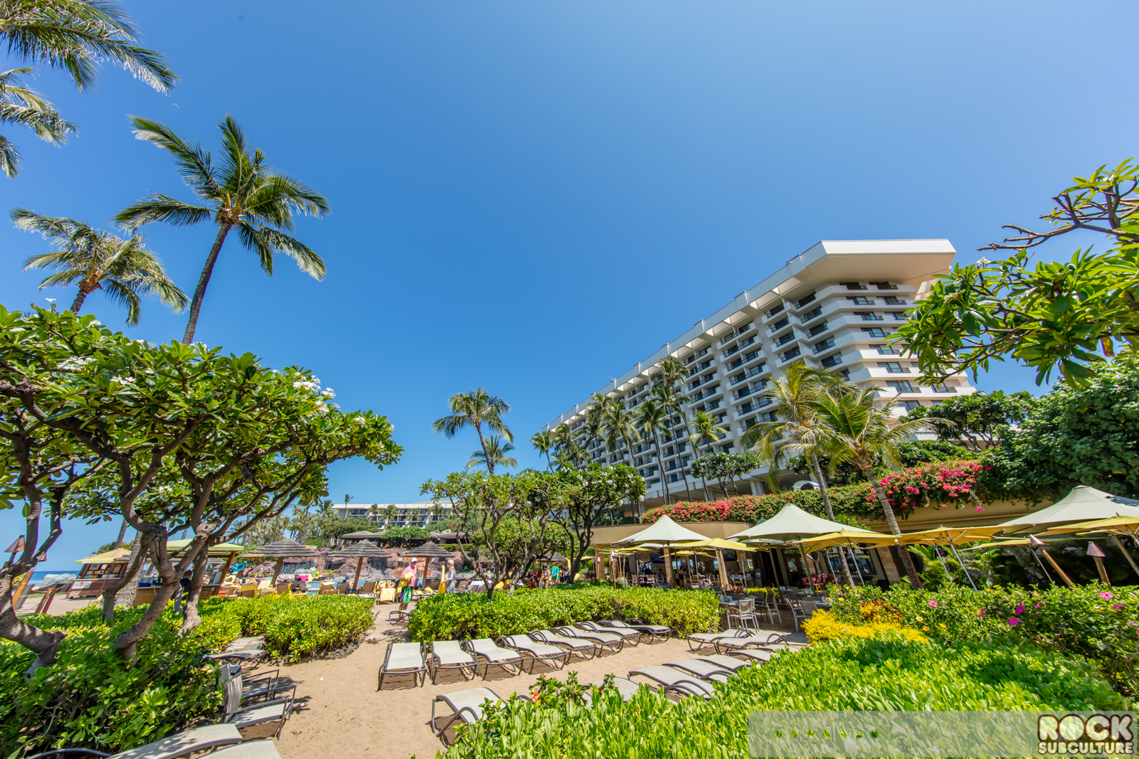 Hotel Resort Review Hyatt Regency Maui Resort Amp Spa